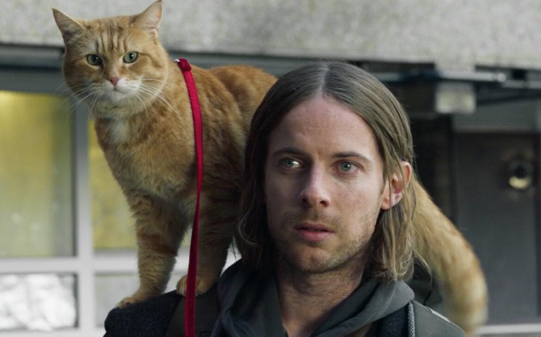 """ชวนดู """"A Christmas Gift From BOB"""" หนังแมวฟีลกู้ดบรรยากาศคริสต์มาส ที่จะทำให้ใครหลายคนแอบรู้สึกอิจฉาแมวที่ยังได้รับการเหลียวแลจากรัฐมากกว่าคนซะอีก"""